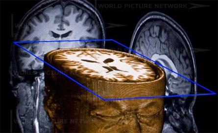 ساختار ذهن - دکتر طباطبایی